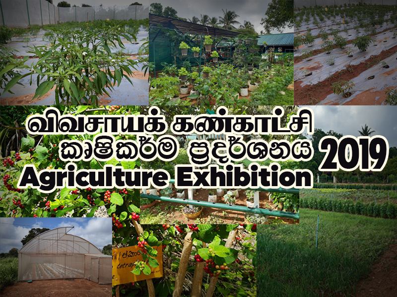 Agriculture Exhibition – 2019